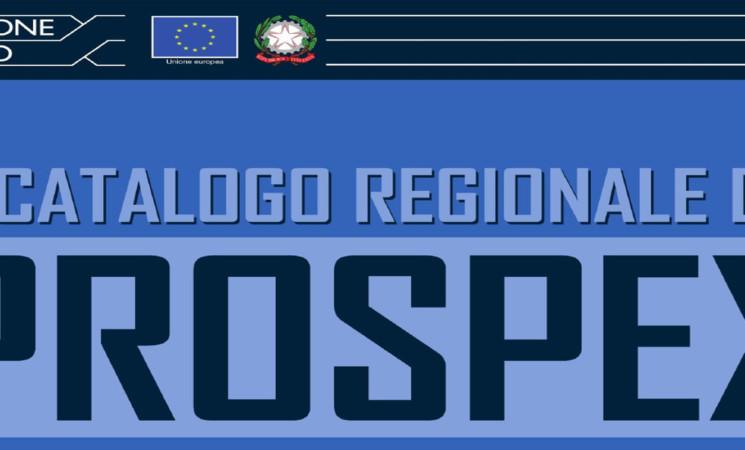 BANDO DI PROMOZIONE DELL'EXPORT DELLE PMI - POR FESR PROSPEX